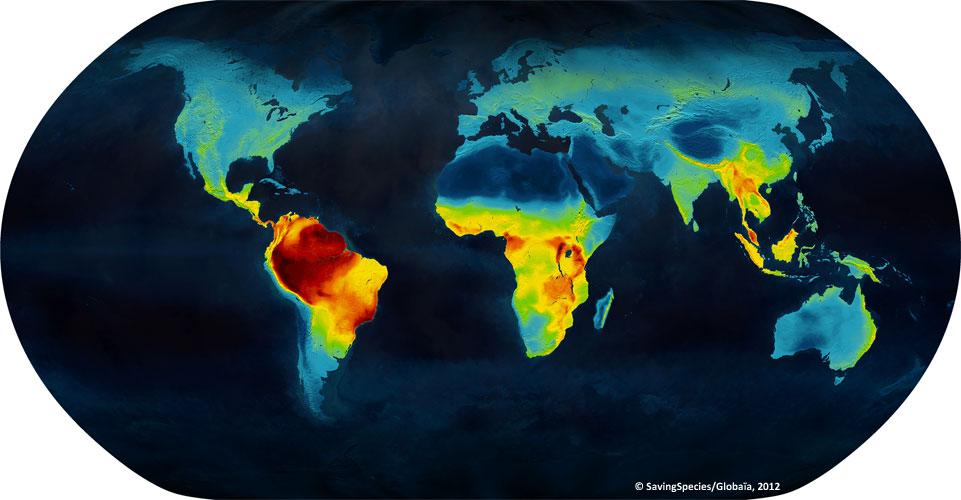 Répartition géographique de la biodiversité sur notre planète