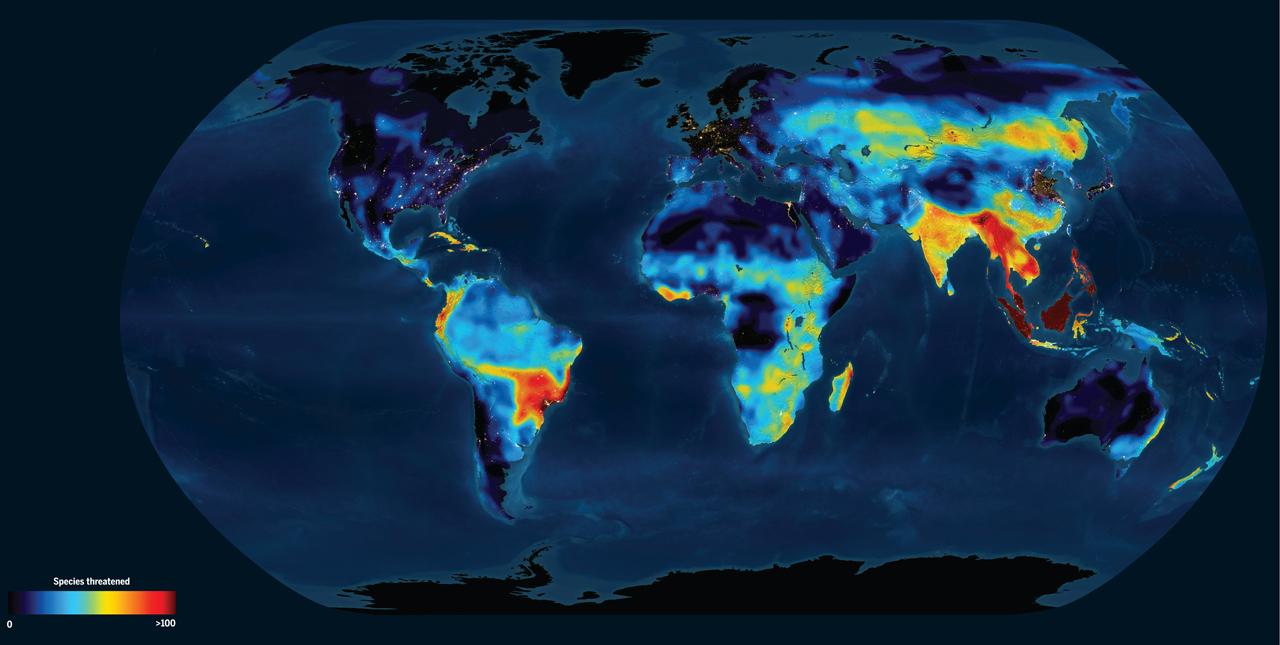 Taux d'exctinction des espèces de vértébrés dans le monde
