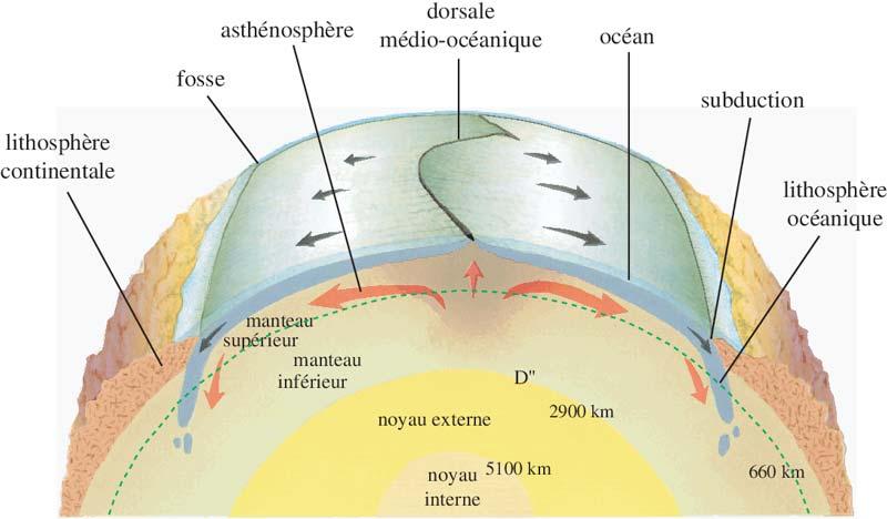 Diagramme resumant le mouvement des plaques tectoniques