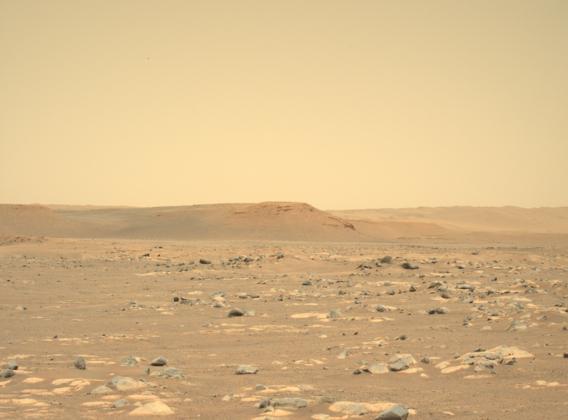 Paysage martien vu par le robot Perseverance.