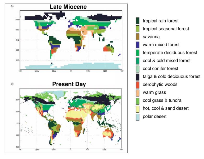 Schéma illustrant le climat et la végétation au Sahara lors du Miocène Supérieur en comparaison avec le climat et la végétation au Sahara aujourd'hui.