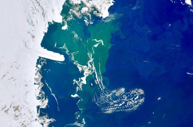Image satellite montrant une vaste zone verte de phytoplancton depuis l'espace près de l'Antarctique.