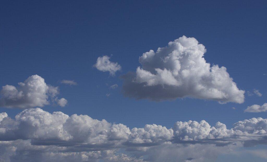 Les cumulus présentent une forme boursouflée facilement reconnaissable